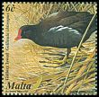 Cl: Common Moorhen (Gallinula chloropus) SG 1229 (2001) 85
