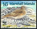 Cl: Bristle-thighed Curlew (Numenius tahitiensis)(Endemic or near-endemic)  SG 826 (1997) 95