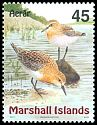 Cl: Red-necked Stint (Calidris ruficollis) <<Aerar>>  SG 1118 (1999) 325