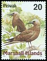 Cl: Brown Noddy (Anous stolidus) SG 1113 (1999) 100