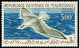 Cl: Slender-billed Gull (Larus genei) <<Go&eacute;land railleur>>  SG 148 (1960) 1450