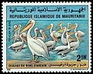 Cl: Great White Pelican (Pelecanus onocrotalus) SG 713 (1981) 40