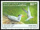 Cl: Royal Tern (Sterna maxima) SG 900 (1987) 125