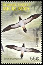 Cl: Brown Booby (Sula leucogaster) SG 1286d2 (2005)  [3/47]