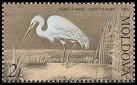 Cl: Great Egret (Ardea alba) <<Egreta mare>>  SG 478 (2003)  [3/5]