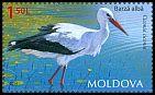 Cl: White Stork (Ciconia ciconia) <<Barza alba>>  new (2014)  [9/28]