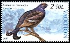 Cl: Black Grouse (Tetrao tetrix) <<Cocos-de-mesteacan>> (Out of range)  SG 584 (2007)  [4/20]