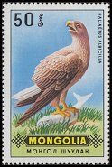 Cl: White-tailed Eagle (Haliaeetus albicilla) SG 578 (1970) 15