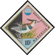 Cl: Northern Lapwing (Vanellus vanellus) SG 875 (1974) 10 [3/25]