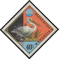 Cl: Dalmatian Pelican (Pelecanus crispus)(Repeat for this country)  SG 878 (1974) 25