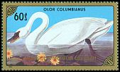 Cl: Tundra Swan (Cygnus columbianus)(Repeat for this country)  SG 1781 (1986) 100