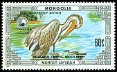Cl: Dalmatian Pelican (Pelecanus crispus)(Repeat for this country)  SG 1805 (1986) 100