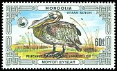 Cl: Great White Pelican (Pelecanus onocrotalus)(Repeat for this country)  SG 1806 (1986) 100