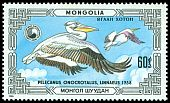 Cl: Great White Pelican (Pelecanus onocrotalus) SG 1807 (1986) 100