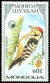 Cl: Lesser Spotted Woodpecker (Dendrocopos minor) SG 1827 (1987) 0