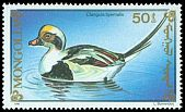 Cl: Long-tailed Duck (Clangula hyemalis) SG 2204 (1991)