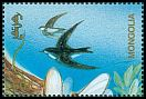 Cl: Bank Swallow (Riparia riparia) SG 2450 (1994)