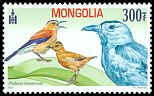 Cl: Mongolian Ground-Jay (Podoces hendersoni)(Endemic or near-endemic)  SG 3284 (2014)
