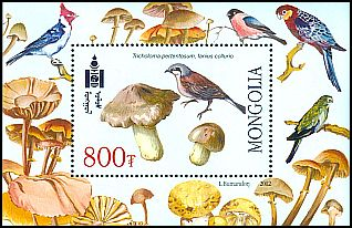 Cl: Red-backed Shrike (Lanius collurio)(Repeat for this country)  SG 3005a (2003)