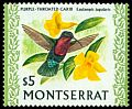 Cl: Purple-throated Carib (Eulampis jugularis) SG 254 (1970) 750