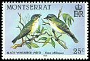 Cl: Black-whiskered Vireo (Vireo altiloquus) SG 604 (1984) 40