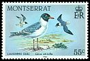 Cl: Laughing Gull (Larus atricilla) SG 606 (1984) 75