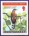 Cl: Mangrove Cuckoo (Coccyzus minor) SG 1049 (1997) 110 [5/57]