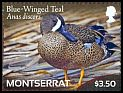 Cl: Blue-winged Teal (Anas discors)(I do not have this stamp)  SG 1503d (2012)  [7/56]