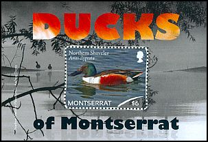 Cl: Northern Shoveler (Anas clypeata)(I do not have this stamp)  SG 1504 (2012)  [7/56]