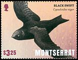 Cl: Black Swift (Cypseloides niger) SG 1573b (2016)  [10/14]