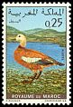 Cl: Ruddy Shelduck (Tadorna ferruginea) SG 292 (1970) 50