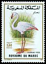 Morocco <<Flamant rose>> SG 755 (1988)