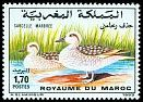 Cl: Marbled Teal (Marmaronetta angustirostris) <<Sarcelle marbr&eacute;e>>  SG 855 (1993)