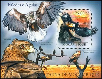 Mozambique <<Aguia negra Africana>> new (2011)
