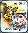 Mozambique <<Bufo-do-cabo>> new (2011)