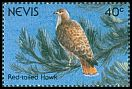Cl: Red-tailed Hawk (Buteo jamaicensis)(Repeat for this country)  SG 603 (1991)