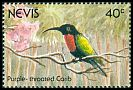Cl: Purple-throated Carib (Eulampis jugularis) SG 614 (1991)