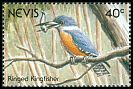 Cl: Ringed Kingfisher (Ceryle torquatus) SG 616 (1991)