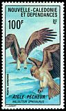 Cl: Whistling Kite (Haliastur sphenurus) <<Aigle p&ecirc;cheur>>  SG 417 (1966) 1250