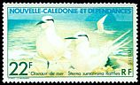 Cl: Black-naped Tern (Sterna sumatrana) SG 594 (1978) 80