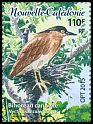 Cl: Rufous Night-Heron (Nycticorax caledonicus) new (2015)  [10/2]