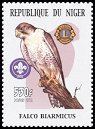 Cl: Lanner Falcon (Falco biarmicus)(Repeat for this country) (not catalogued)  (2002)