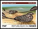 Cl: Standard-winged Nightjar (Macrodipteryx longipennis)(I do not have this stamp) (not catalogued)  (2015)