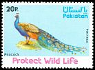 Cl: Indian Peafowl (Pavo cristatus) SG 411 (1976) 75