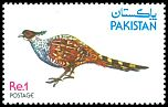 Cl: Cheer Pheasant (Catreus wallichii) SG 496 (1979) 150