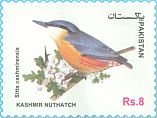 Cl: Kashmir Nuthatch (Sitta cashmirensis)(postal stationery) (not catalogued)  (2017)  [11/99]