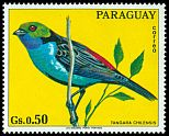 Paraguay not catalogued (1973)