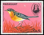 Paraguay not catalogued (1985)