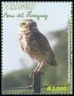 Cl: Burrowing Owl (Athene cunicularia) <<Lechuza Terrestre>>  SG 1951 (2013) 300 [9/18]
