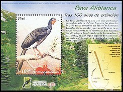 Cl: White-winged Guan (Penelope albipennis) <<Pava Aliblanca>> (Endemic or near-endemic)  SG 2326 (2005)  [3/56]